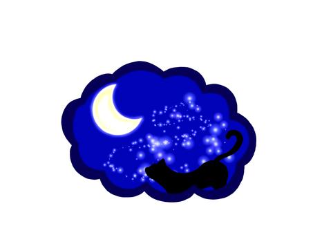 Night starry cat