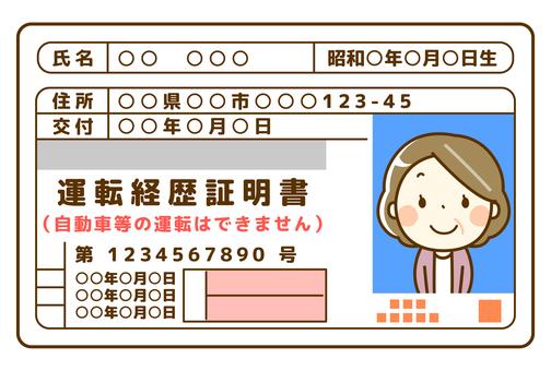 Senior female driving history certificate