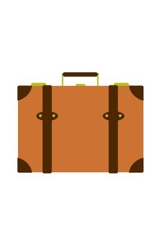 Trunk case (brown)
