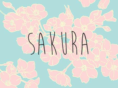 Sakura A