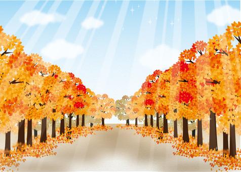 Avenue of trees. Autumn