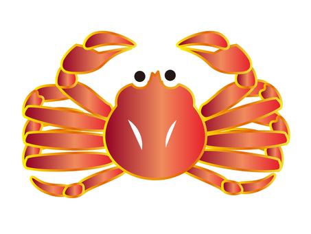 螃蟹(沒有黑框)