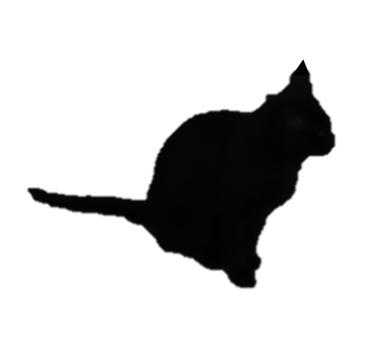 座る猫のシルエット