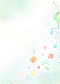 可愛的貝殼背景