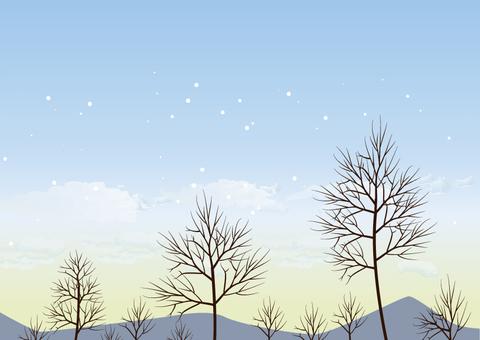 Winter sky