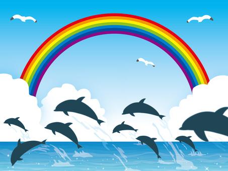 A group of dolphins (18) Rainbow