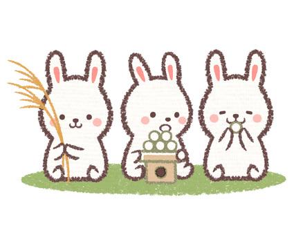 Moon viewing rabbits