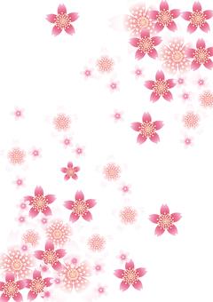 벚꽃의 꽃 93