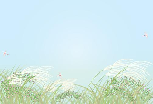 Post card: Susuki