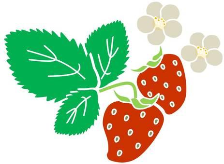 Strawberry 04