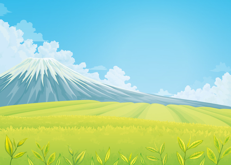 Tea plantation background 02