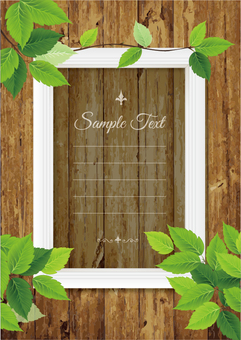 Green wood grain background and white frame _B