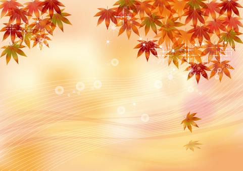 Autumn leaves 57