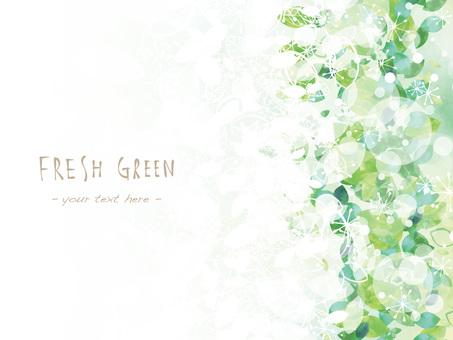 新鮮的綠色框架ver10