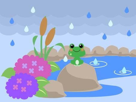 カエルの池