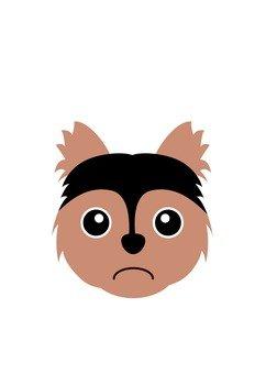 Dog 34