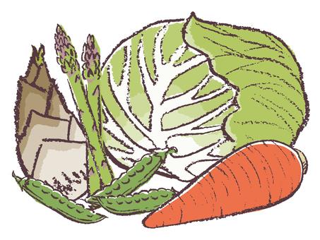 봄 야채 세트