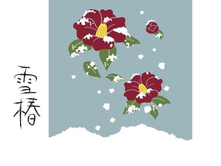 Snow scene camellia