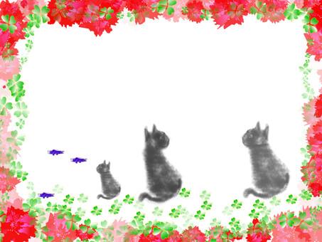 Cat frame 14