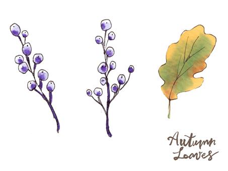 가을 나뭇잎 05