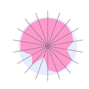Radar Chart 8