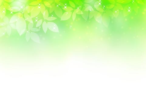 Fresh green material 219