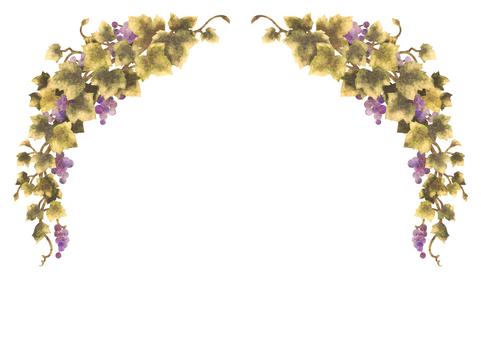 Grape illustration frame 08-2 (no line)