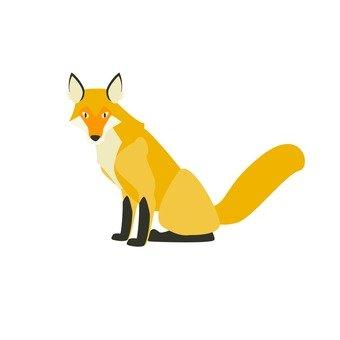 Kita fox