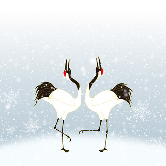A couple of cranes doing courtship dance in the snow