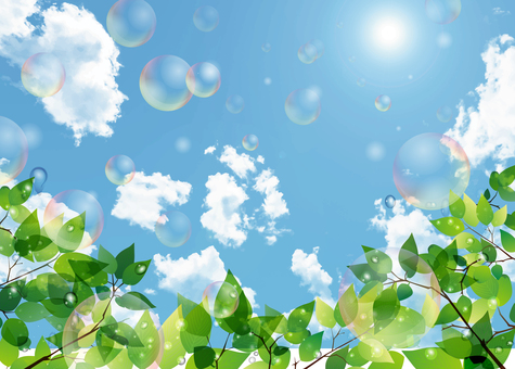 New green, blue sky and soap bubble