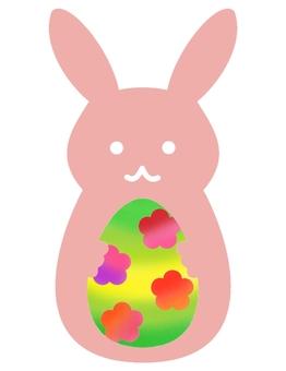 Bunny rabbit 2