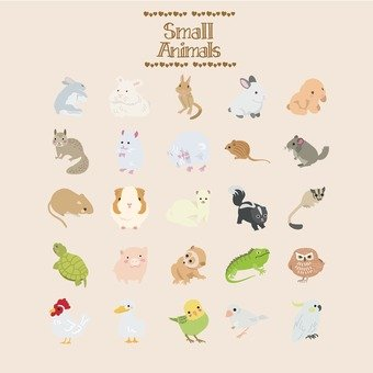 Small animals illustration