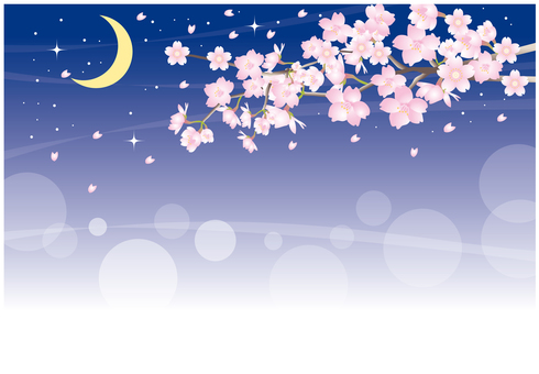 Background of the cherry tree at night