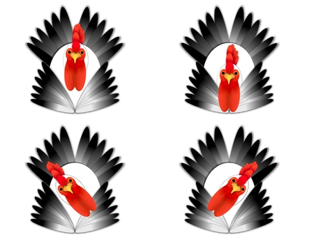 Greeting Chickens 4