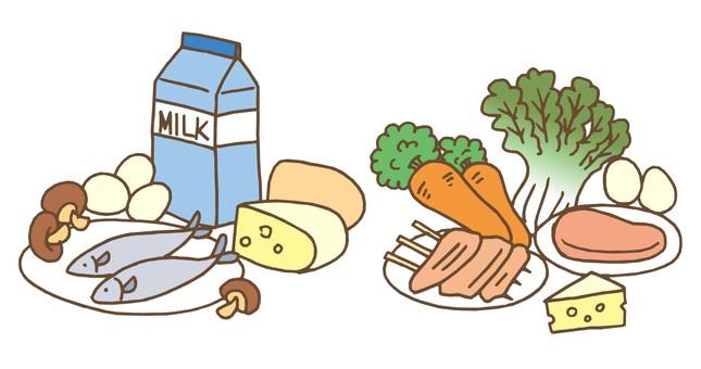 음식 영양
