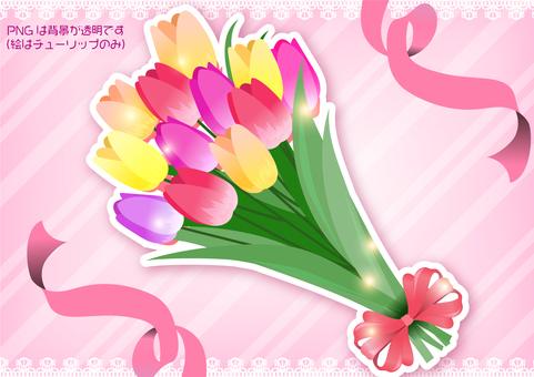 튤립 봄 꽃다발