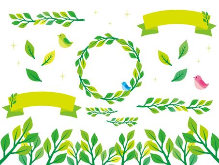 Plant illustration material (3)