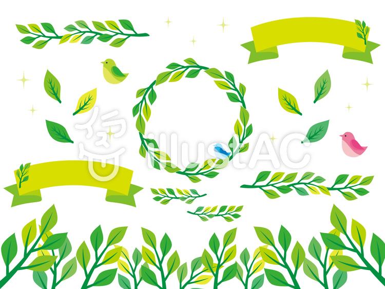 植物イラスト素材3イラスト No 443694無料イラストなら