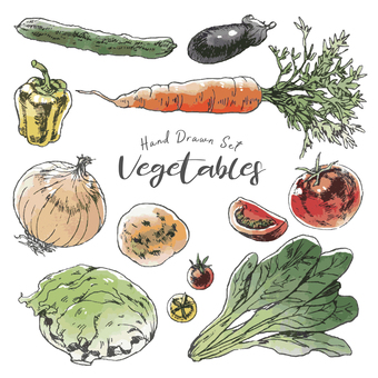 Hand-painted color illustration of vegetables