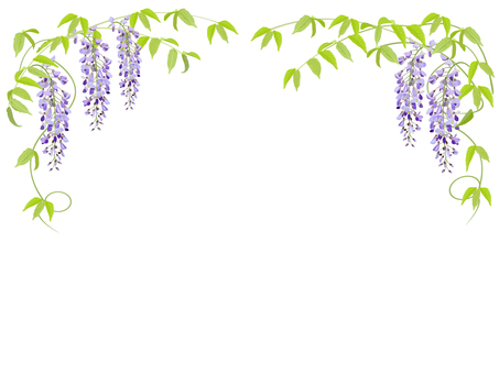 등나무 꽃 프레임