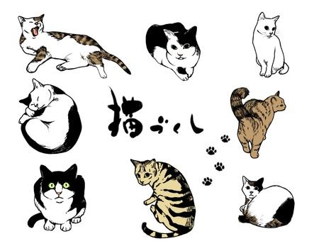 고양이 만끽