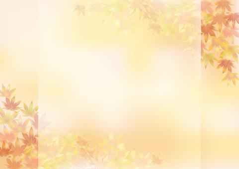 Autumn leaves 358