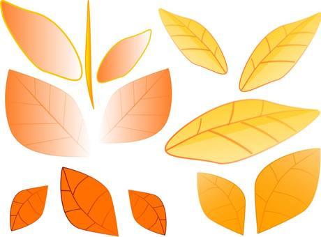 Leaf (autumn color)