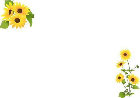 Princess sunflower wallpaper