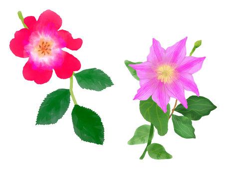 Watercolor flower book 4