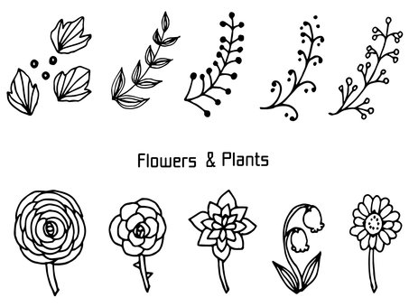 Pencil writing flowers and plants 2