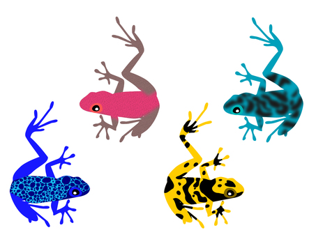 Yadokuda frog