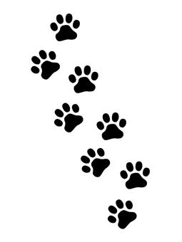 Meatball footprint 縦