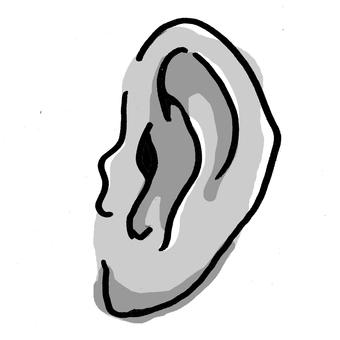 Left ear (white black)