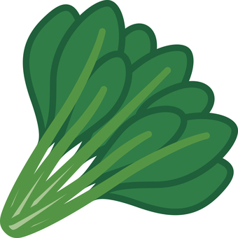 Komatsuna vegetable vegetable